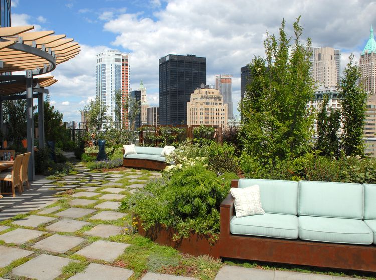 Visionaire Green Roof