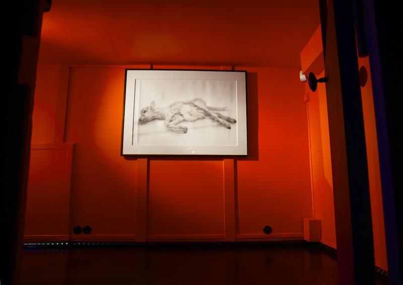 MatsuiFuyuko-expo06.jpg