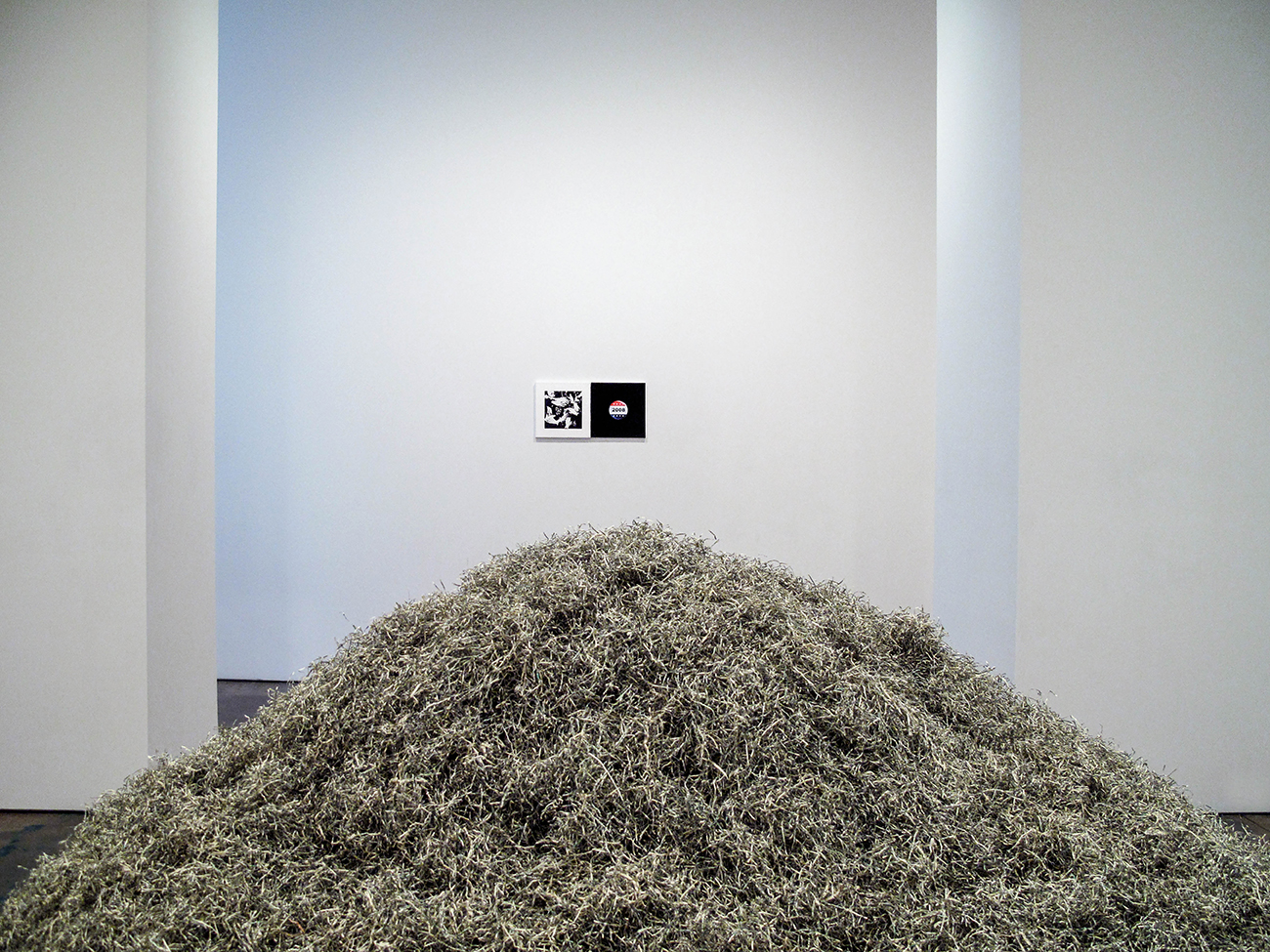 "2009   One million dollars of shredded currency was used as the medium for a series of 10 sculptures by Sebastian ErraZuriz and Thomas McDonell. Each of the 10 sculptures was offered for sale after the New York exhibition, at the price of 100,000 dollars per sculpture.     ErraZuriz and McDonell purchased the shredded bills from the United States Bureau of Printing and Engraving, and created the work after forming a partnership and entering into a contract that guaranteed appropriate distribution of all income derived from the Million Dollar Project.     The sales from the sculptures were intended to allow the artists to recover the hundreds of thousands of dollars invested in their art education and to palliate future unemployment.   The United States Treasury Department, by way of the Bureau of Printing and Engraving, stipulates that currency residue cannot be sold as ""commercial art"".  ErraZuriz and McDonell insist, however, on their right of expression with artistic purpose and further on their right to make a living from their art."