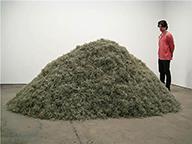 shredded money 1 low.jpg