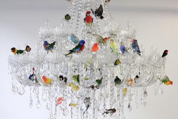bird light.png