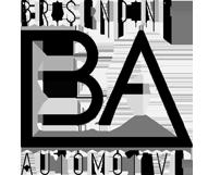 logo_brisendine.png