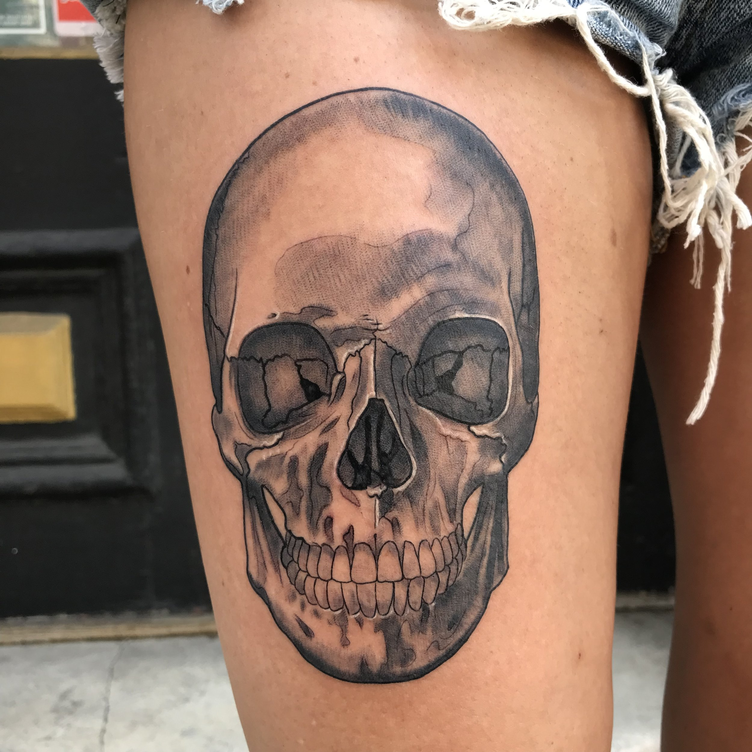 bg skull anatomical realistic Turkus July 2019.jpg