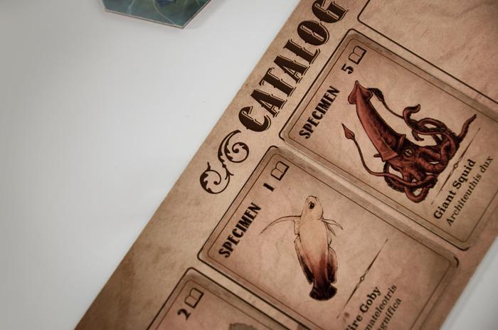 AFO Catalogue CLoseup.jpg