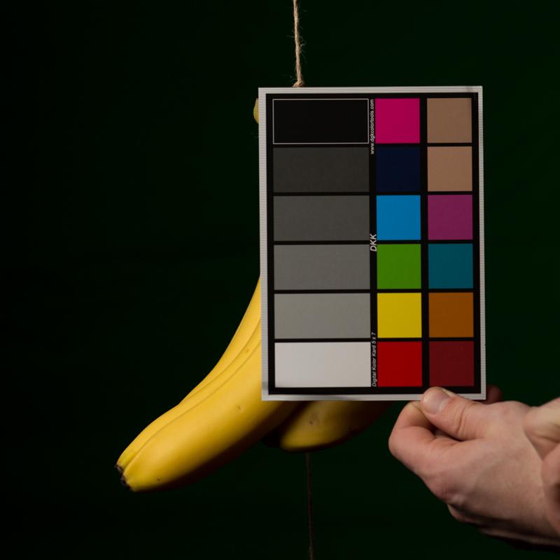031016_bananaTest-005-iarbp.jpg