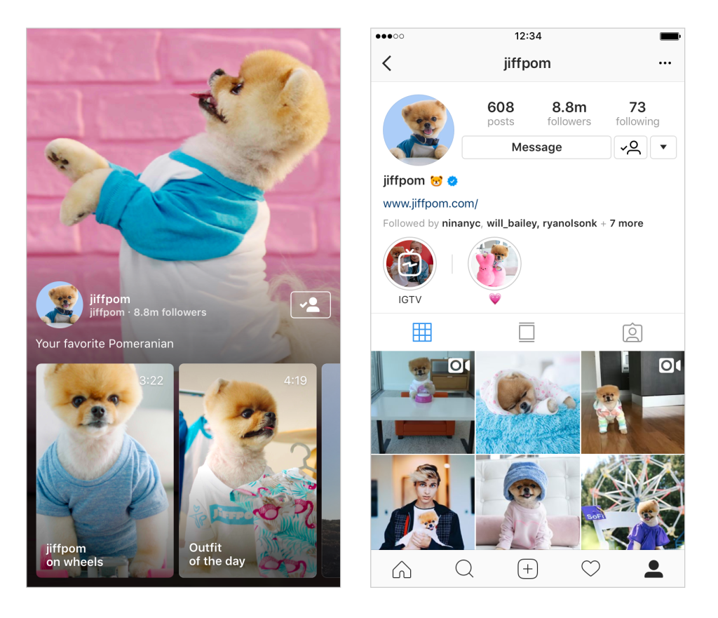 Instagram Rival Youtube.png