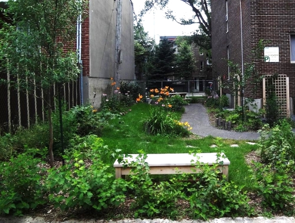 EDIBLE LANDSCAPE:  Transform your garden into a productive and attractivespace using  edible plants.