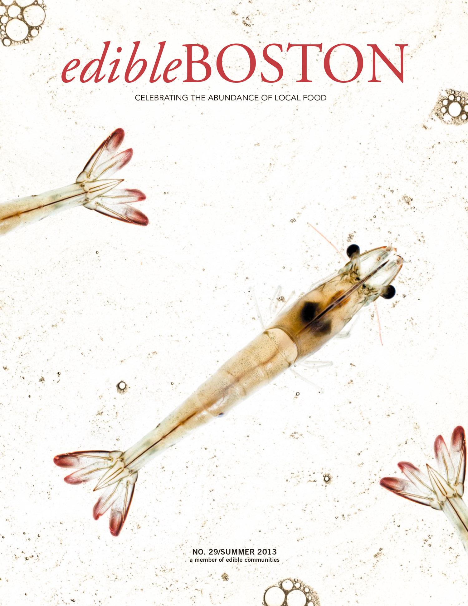 Sky8 Shrimp Edible Boston Cover photographed by Adam DeTour