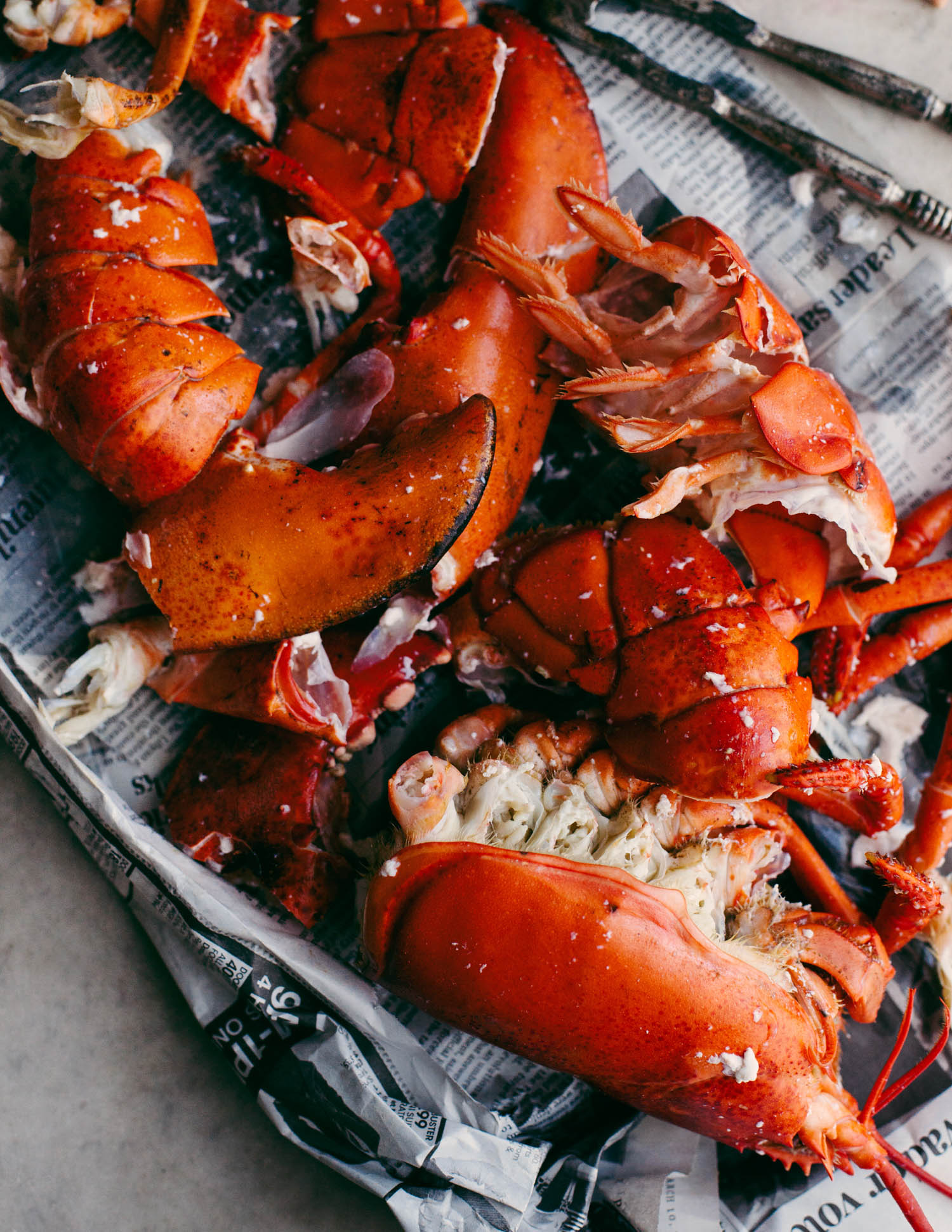 Lobster photographed by Adam DeTour