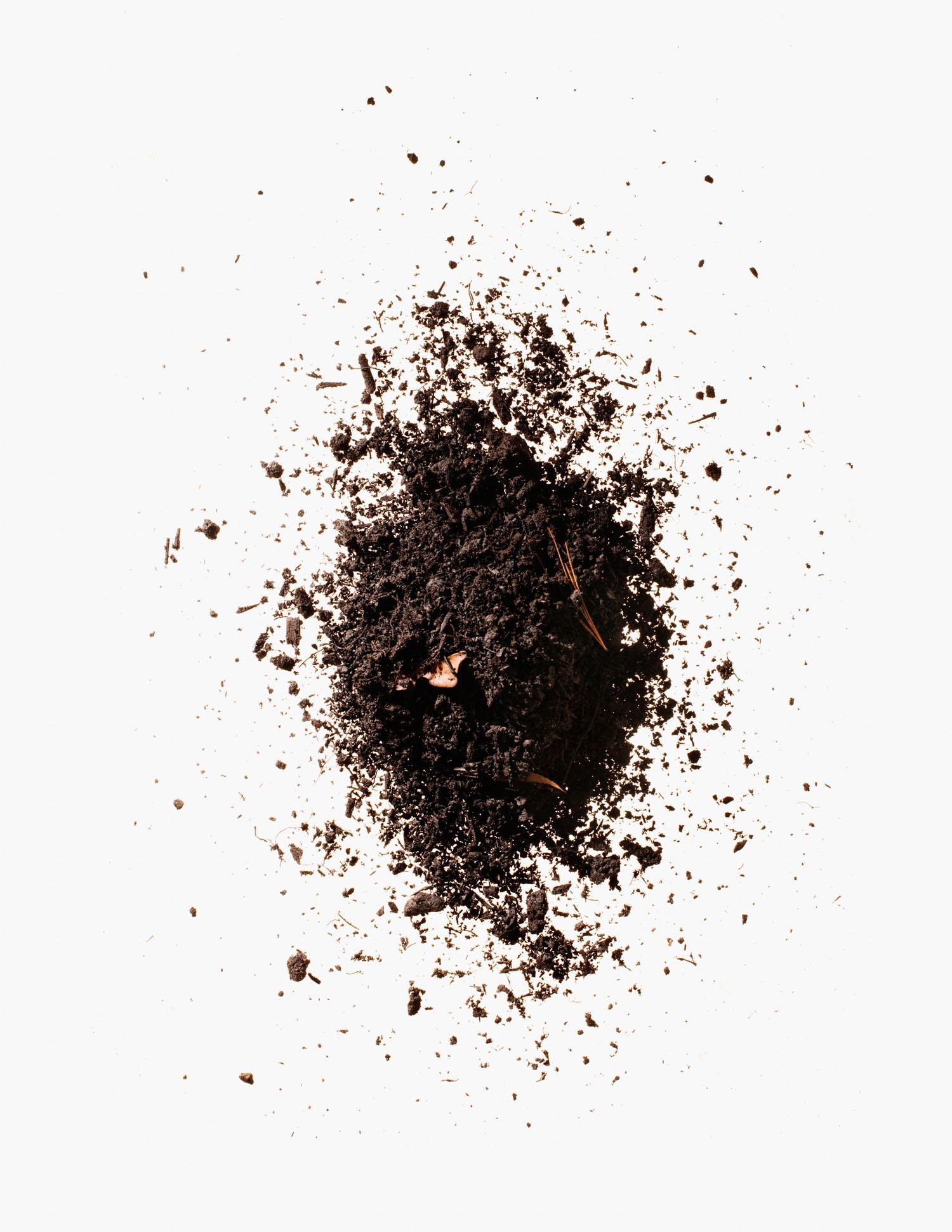 Compost Photographed by Adam DeTour