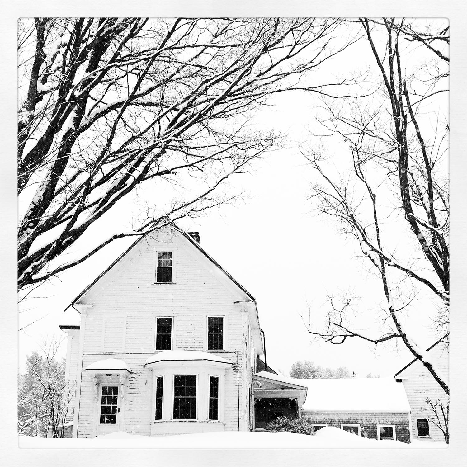 The DeTour farmhouse on a snowy Maine morning.