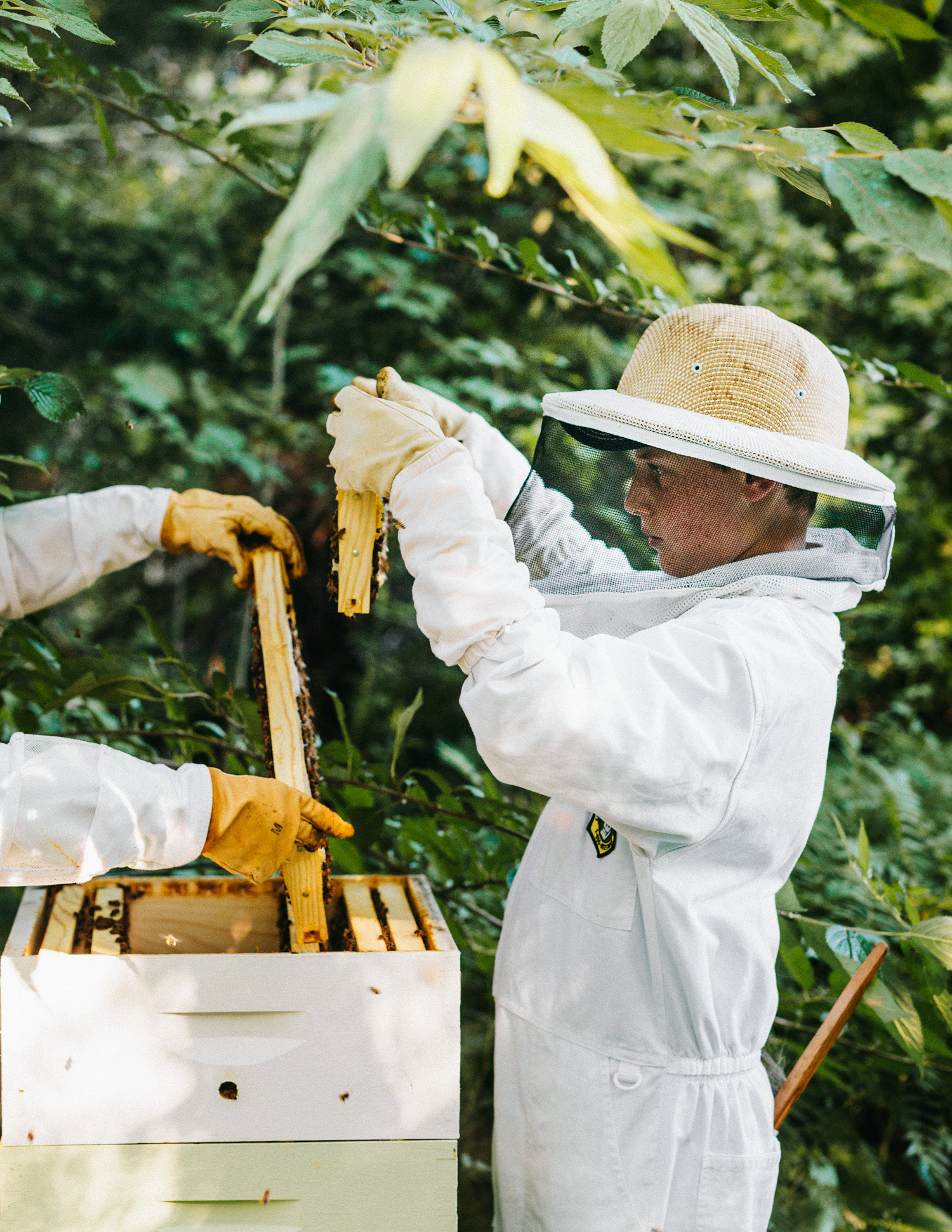 Beekeeper photographed by Adam DeTour