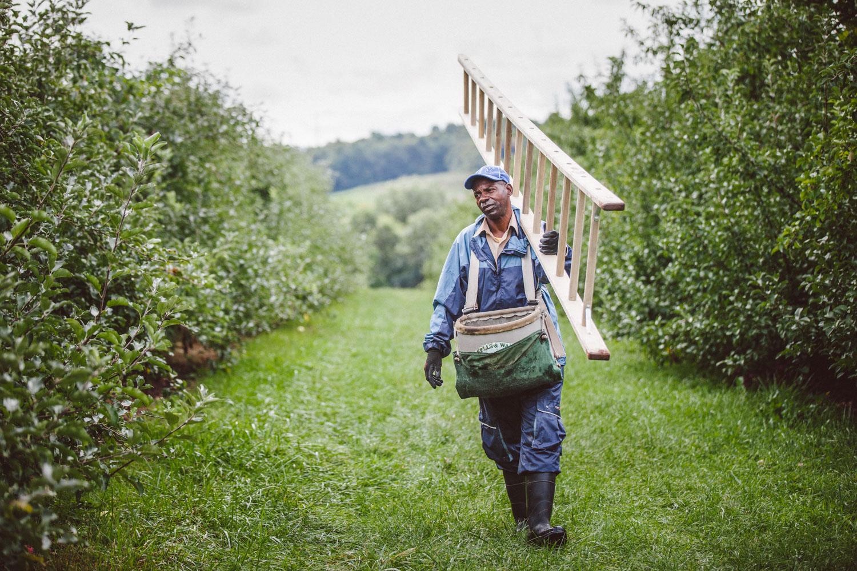 Portrait of farm worker by Adam DeTour