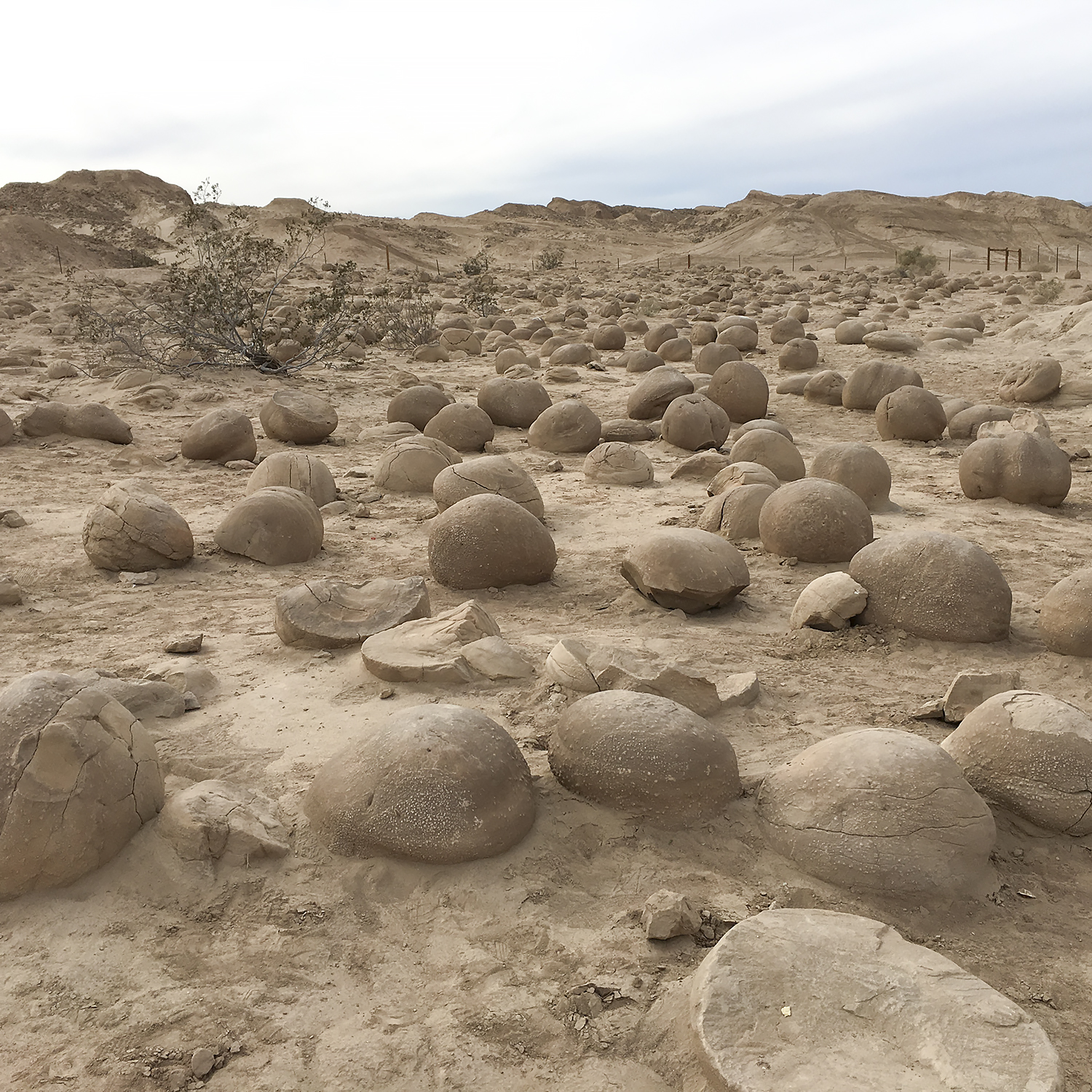 The Pumpkin Patch, a geological phenomenon