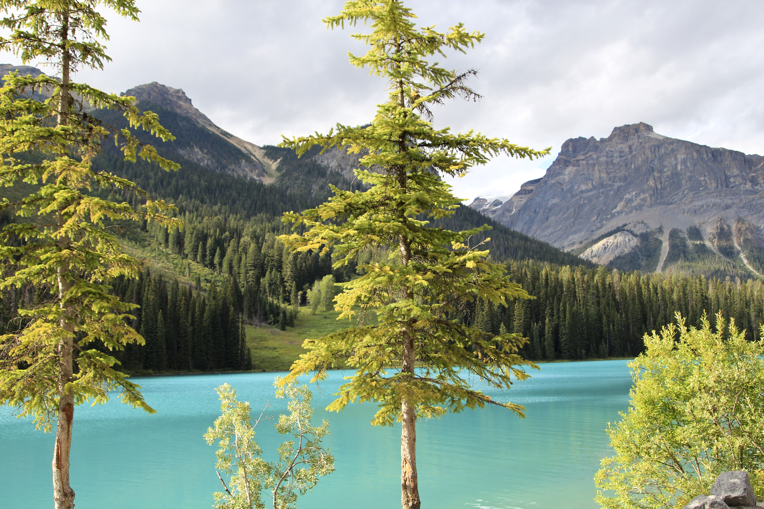 Emerald Lake.No filter. Seriously.