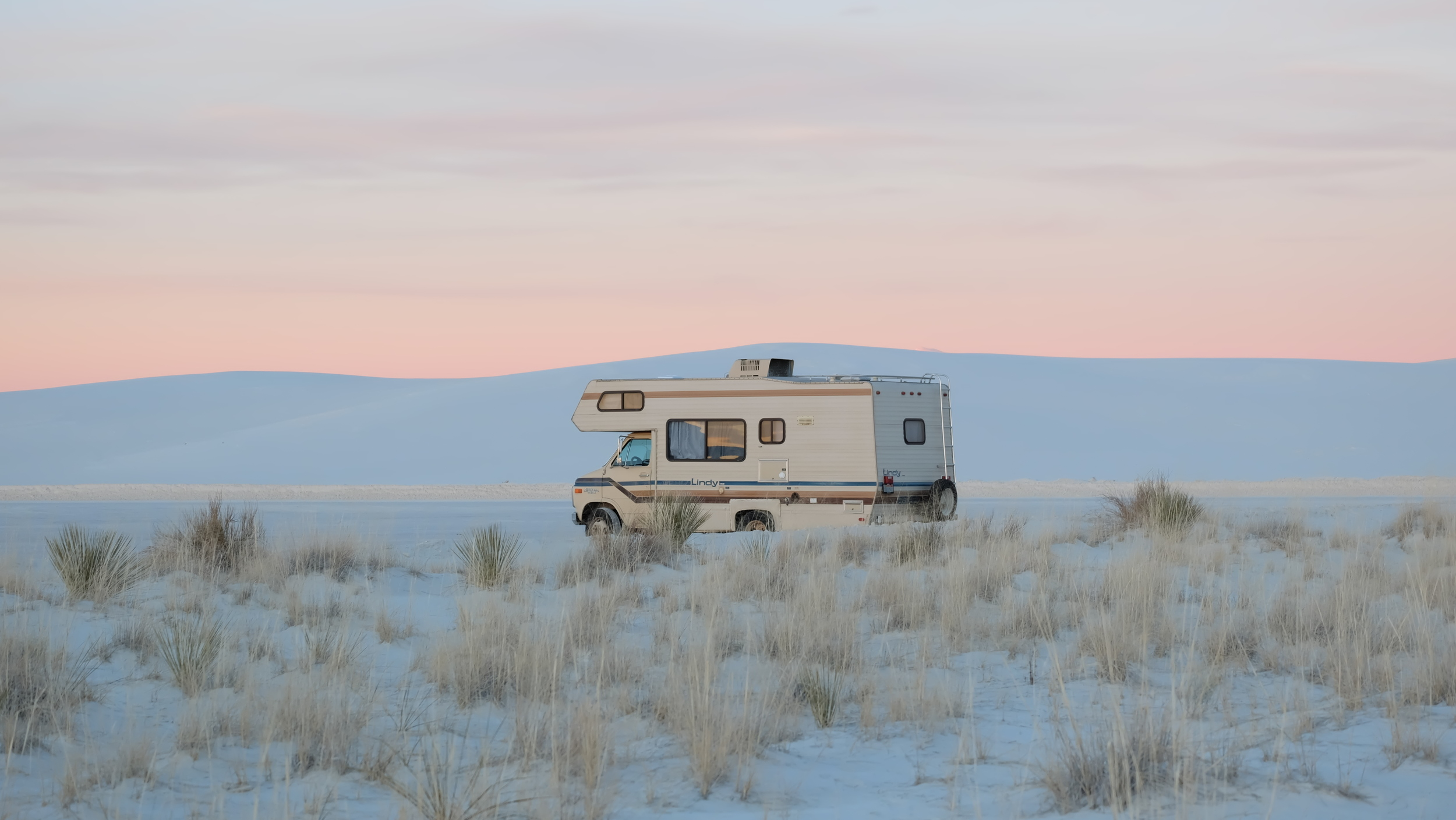Lindy blending into the dunes in White Sands , New Mexico: Photo by Rachel Farabaugh.