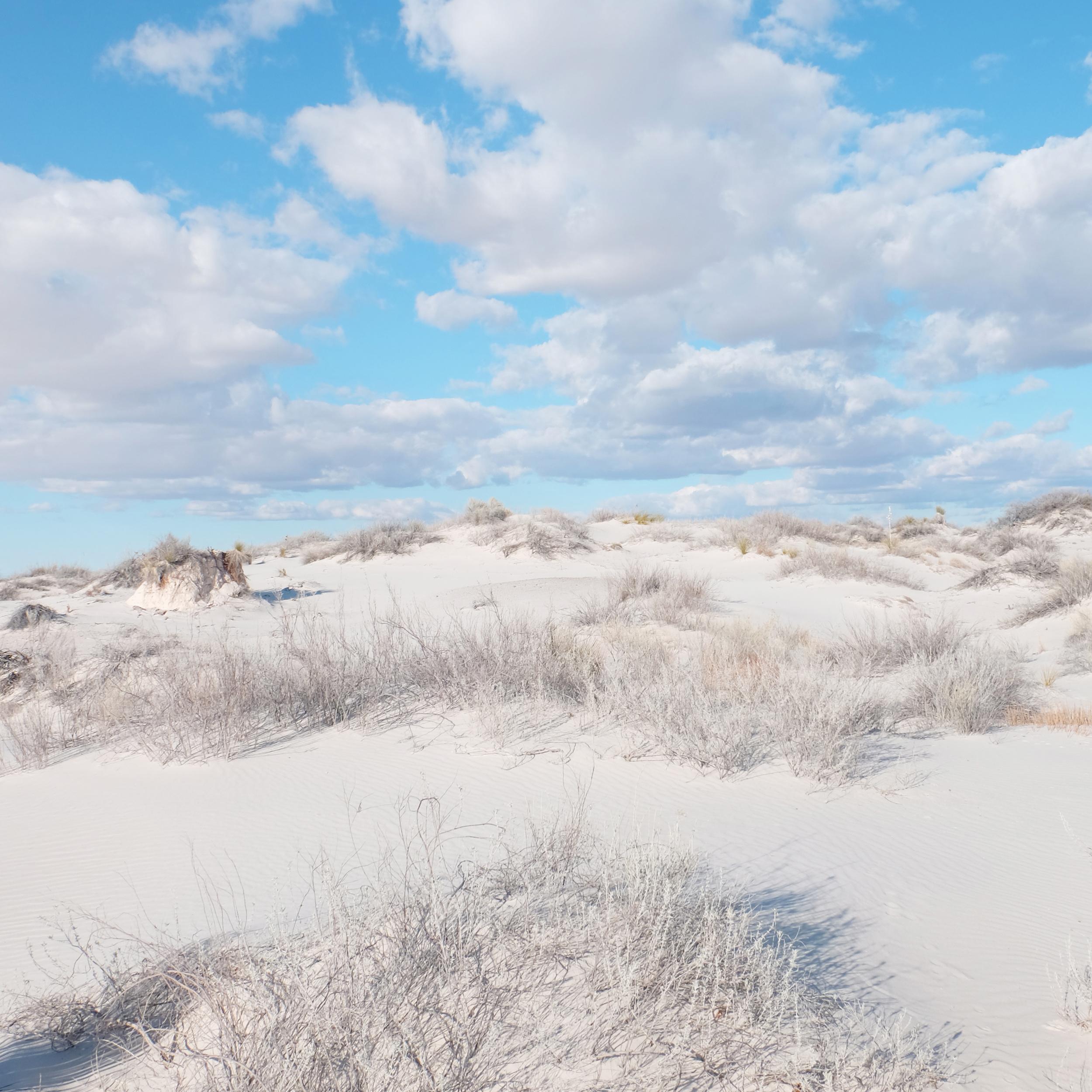 Clouds over pristine sand dunes : Photo by Rachel Farabaugh.