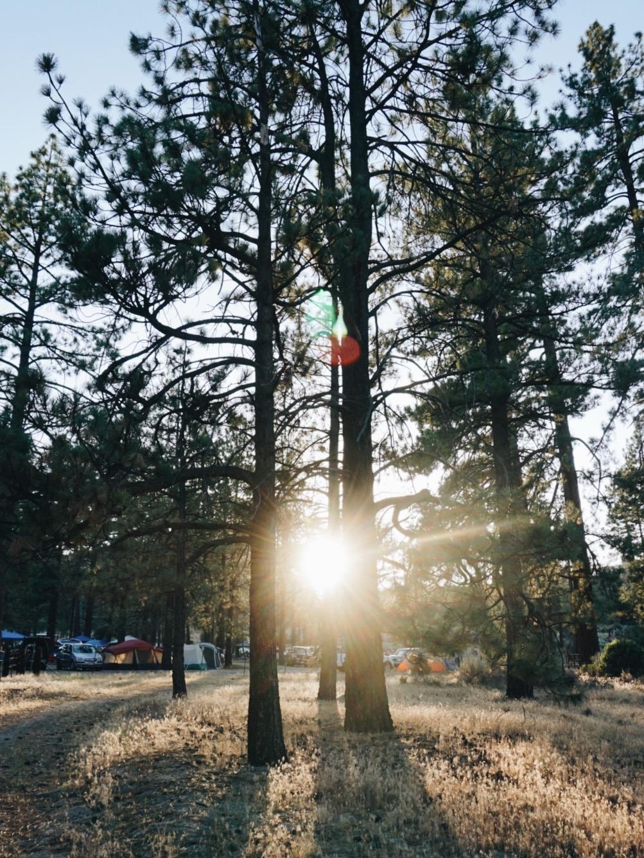 chrissihernandez-idyllwild-california-02