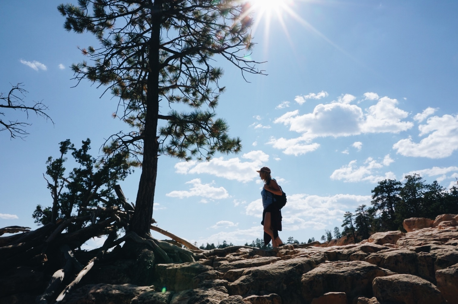 chrissihernandez-utah-bryce-canyon (6).JPG