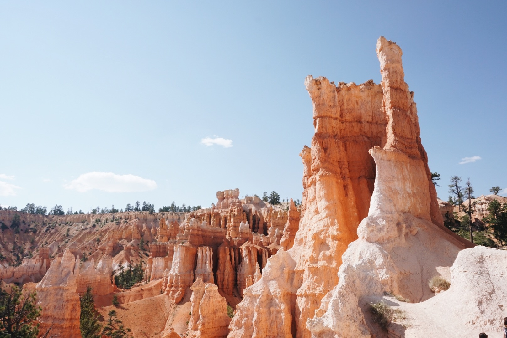 chrissihernandez-utah-bryce-canyon (22).JPG