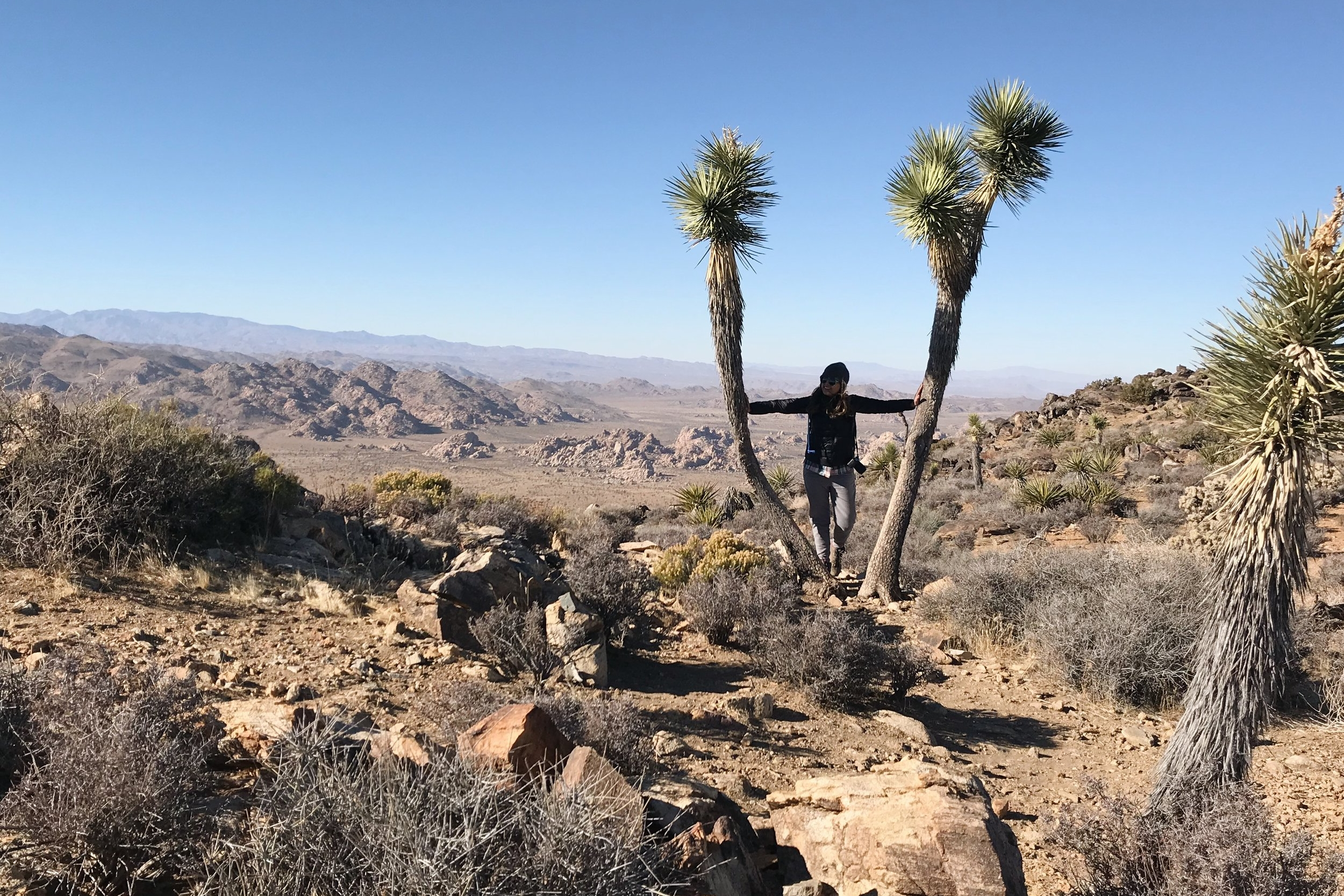 chrissihernandez-joshuatree-ryanmountain-05