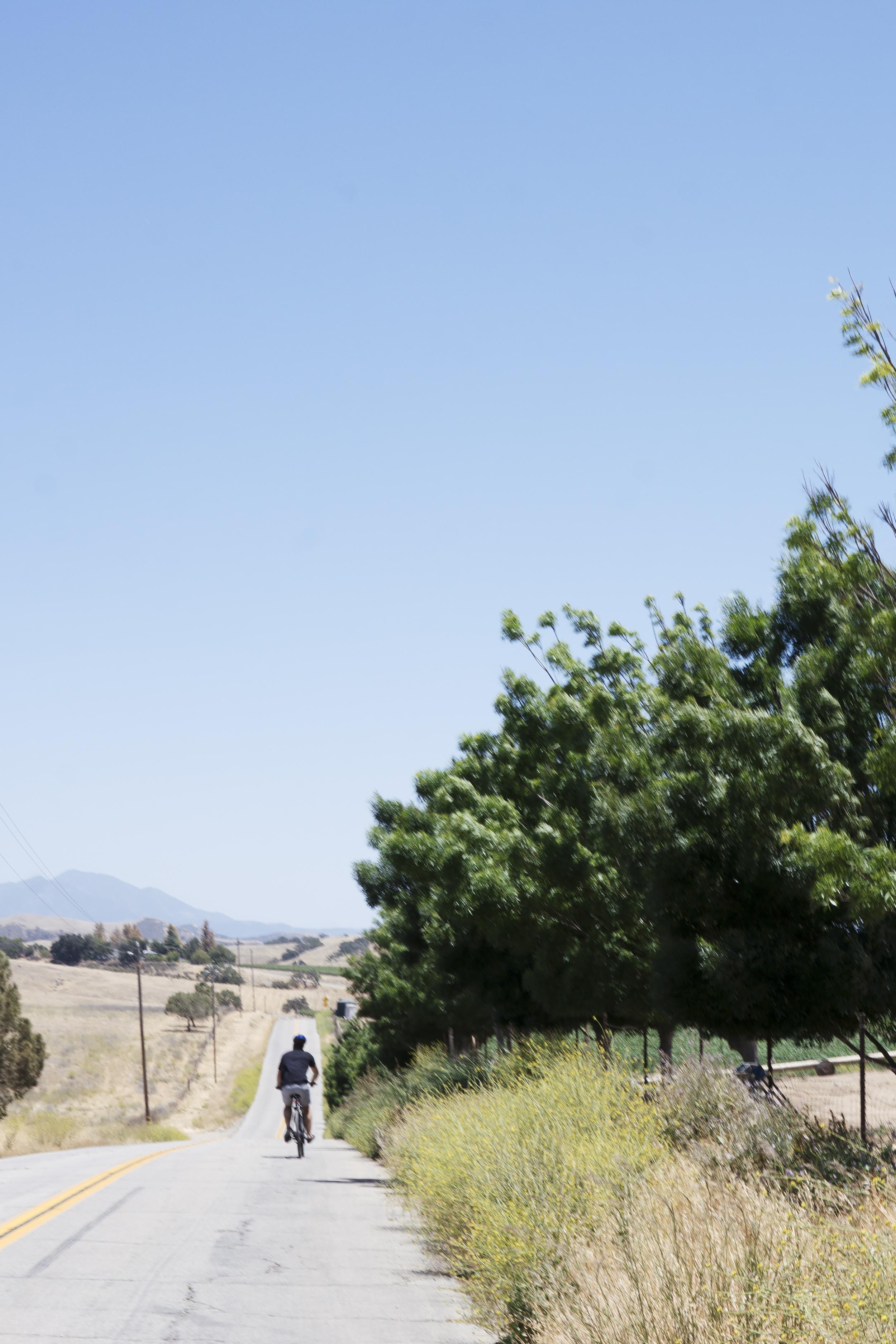 chrissihernandez-california-santaynez (26)copy2500.jpg