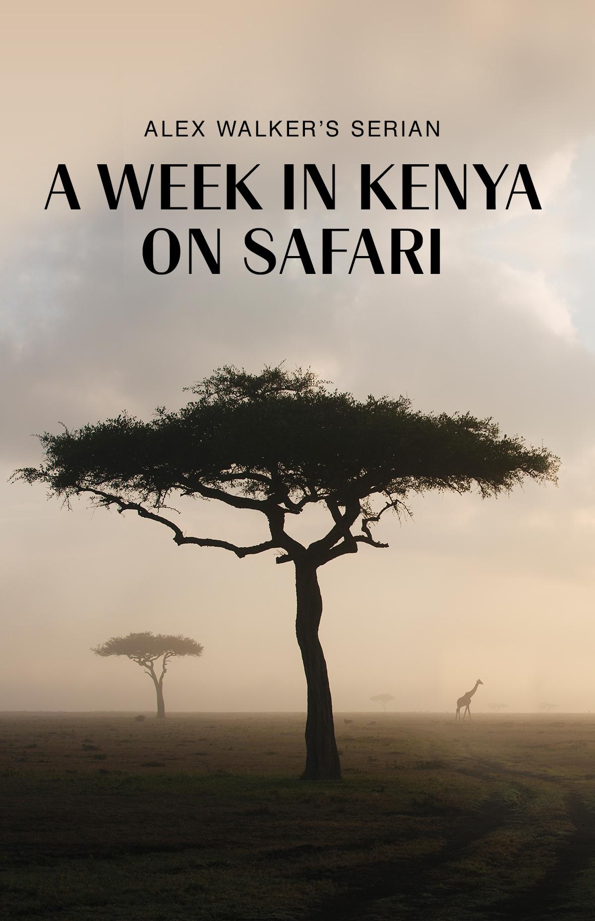 social-chrissihernandez-africa-kenya-masaimara-safari-03.jpg
