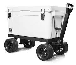 bison cart.jpg