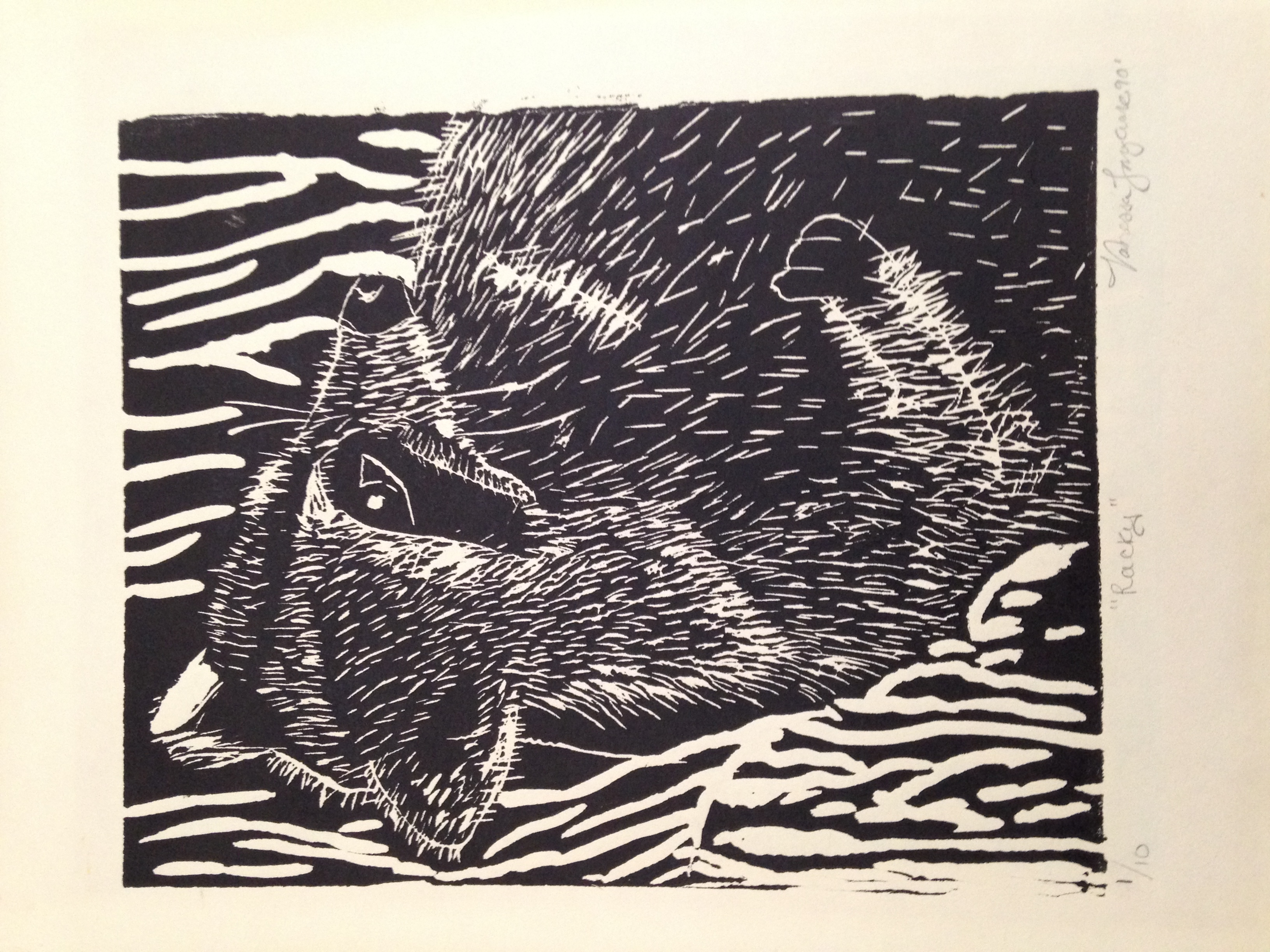 "Figure  6 : Linoleum print. Age: 16, ""Racky"" really?"