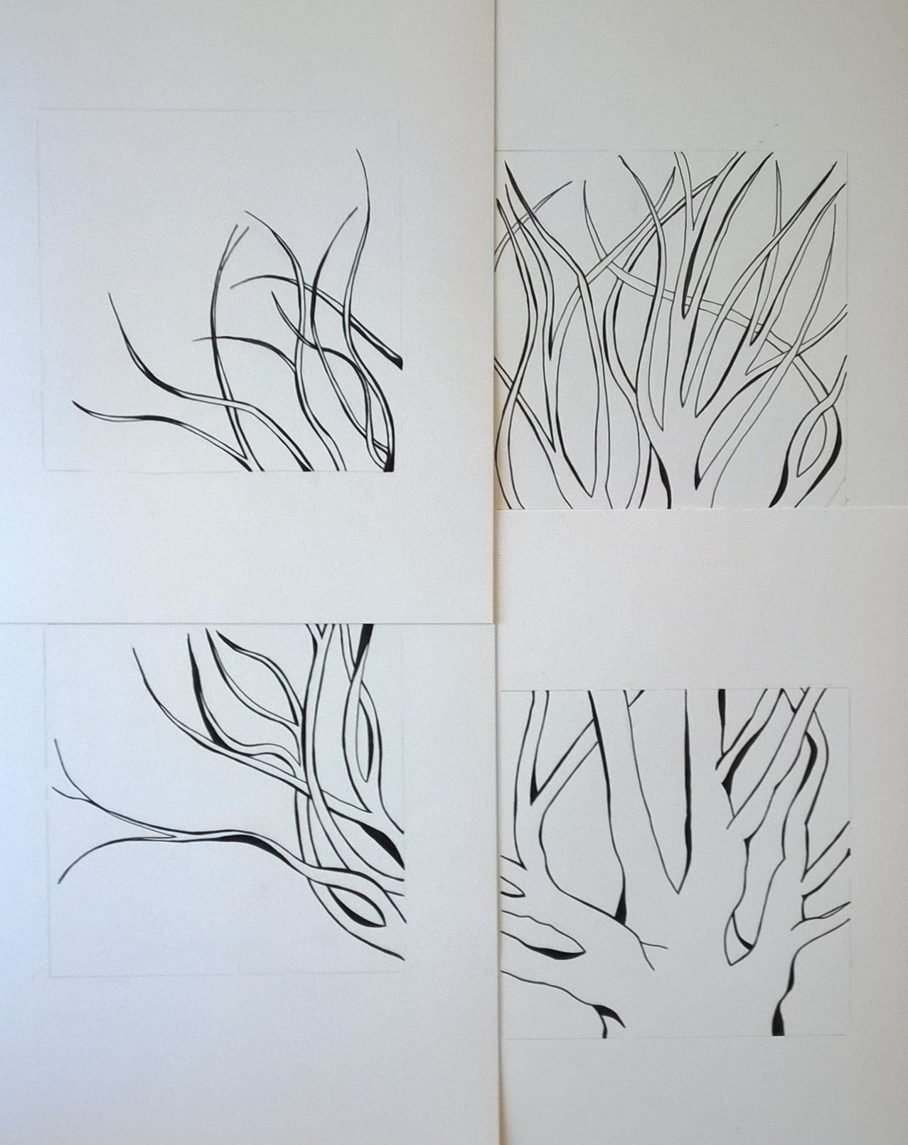 Figure 4: Drawings presented as one piece. When finished, they would share a single mat with 4 openings and be framed as one.