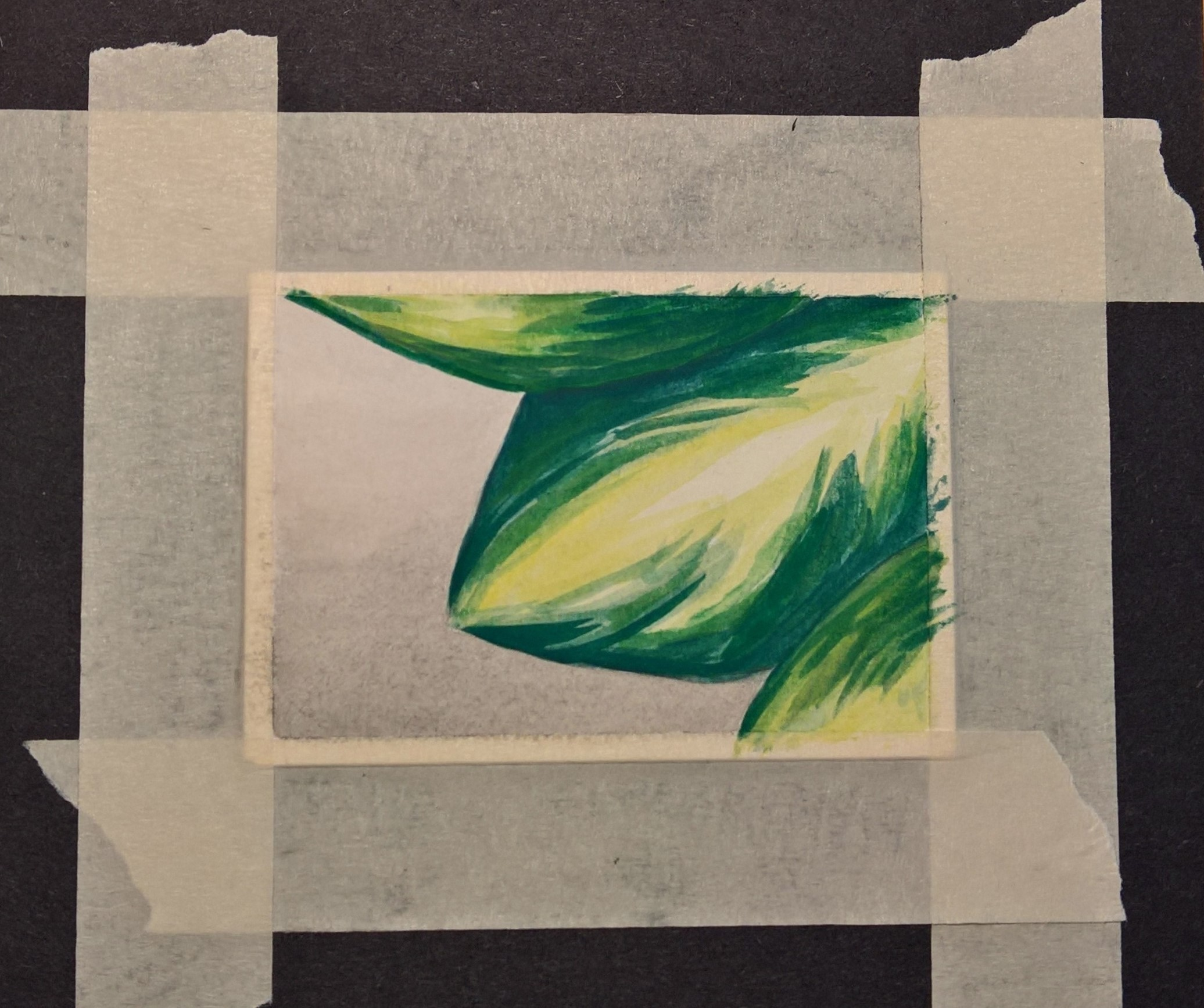 Figure 1 : Watercolor in progress 2 inches by 2.5 inches.