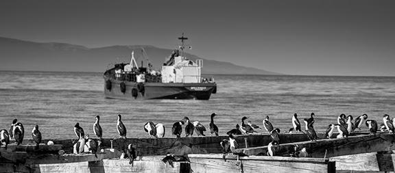 14April_Punta+Arenas_010.jpg