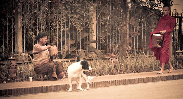12March_Laos_029.jpg
