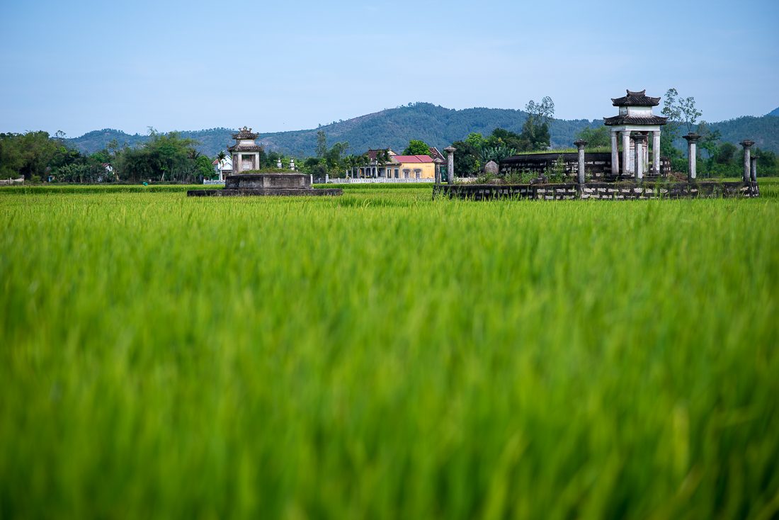 Rice paddies and grave sites. Hoi An, Vietnam