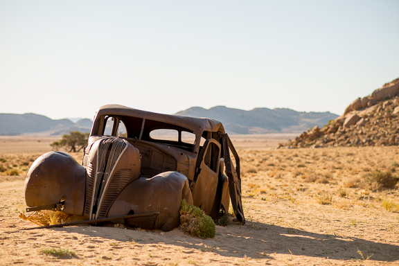 This was on my hike today. An abandoned car in the middle of the desert. There was a sign by this. This car was used in 1934 for a diamond heist. The cops chased the robbers out in the desert and there was a shootout. There are bullet holes in this car. The robbers were killed. But, the diamonds were never found and the ghosts of the robbers still haunt the desert, looking for the diamonds. I don't think I saw any ghosts today. But I saw baboons. I hate them.