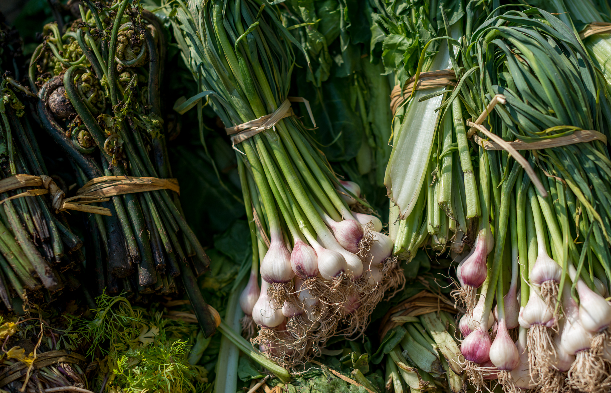 Spring onions at a local market...