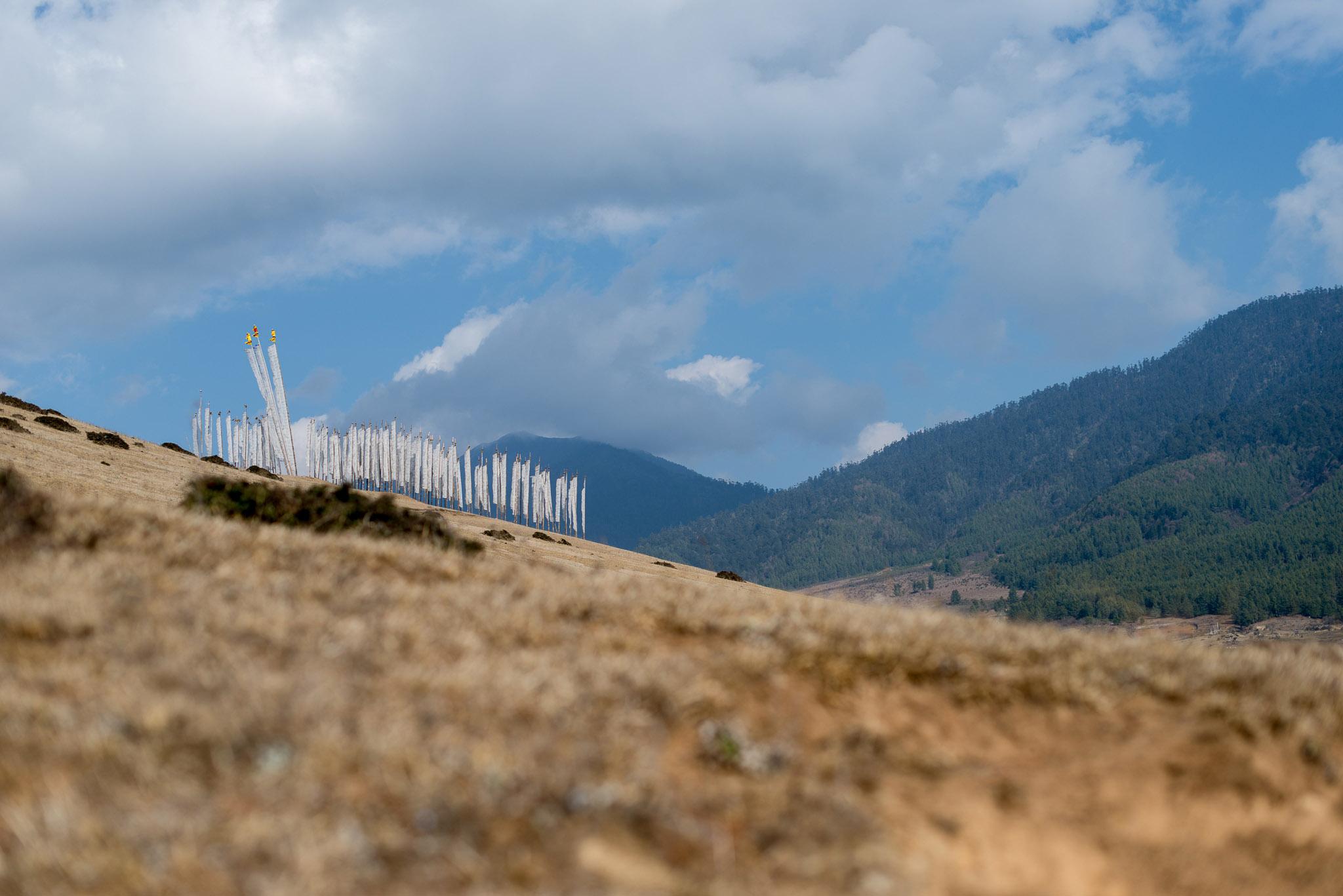18March_Bhutan Gangtey Day 3_1394.jpg