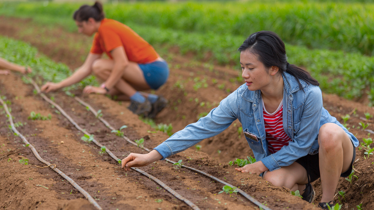 Youth Food Movement -