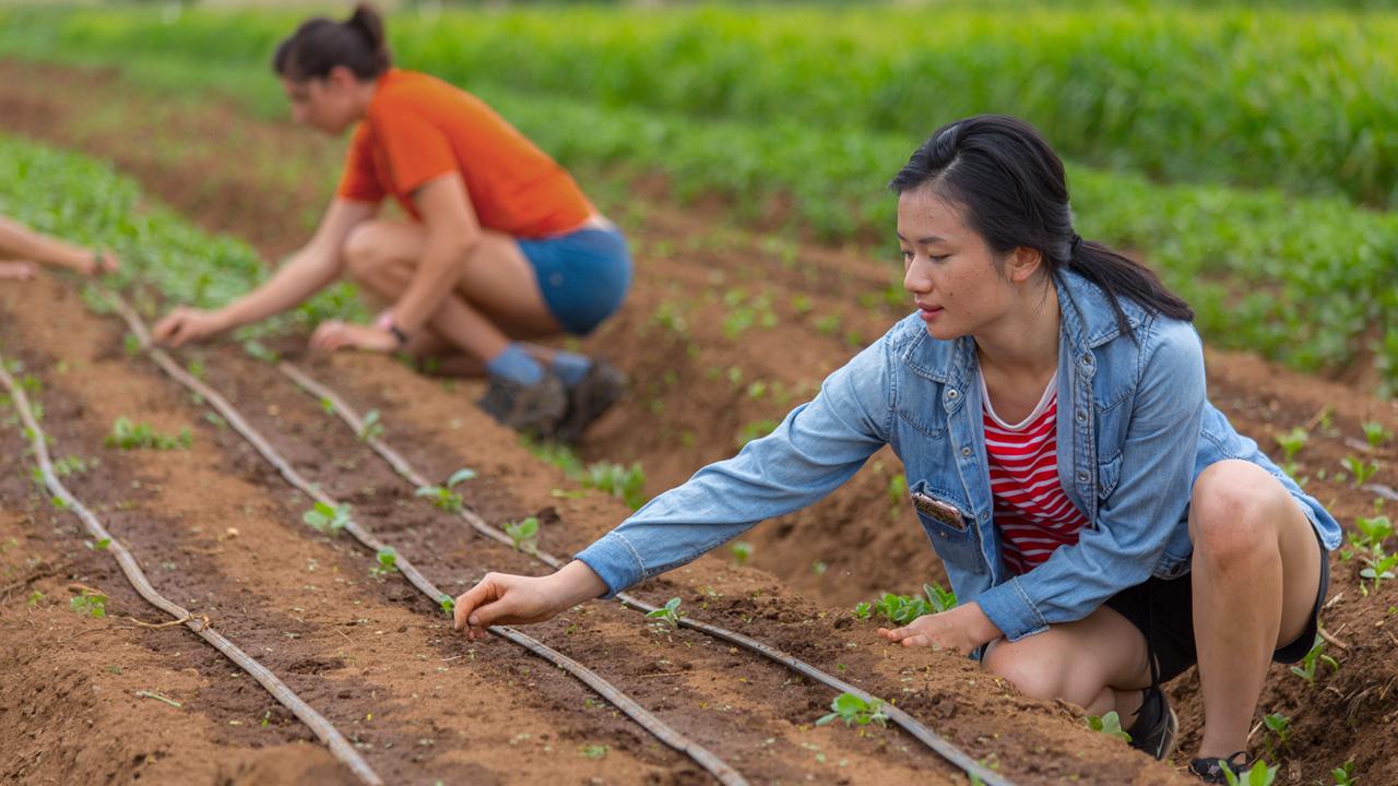 Youth Food Movement - PROMO | COMMUNITY