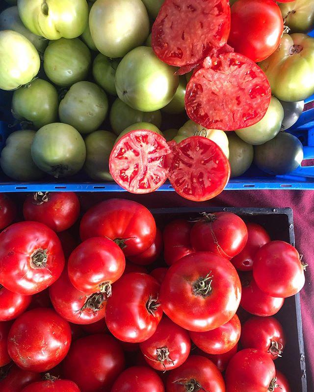 Don't you just love LA in the fall? 👌🏼🍅🥒🥑🌽 #farmersmarketinspo @wehorec @_eyesnears