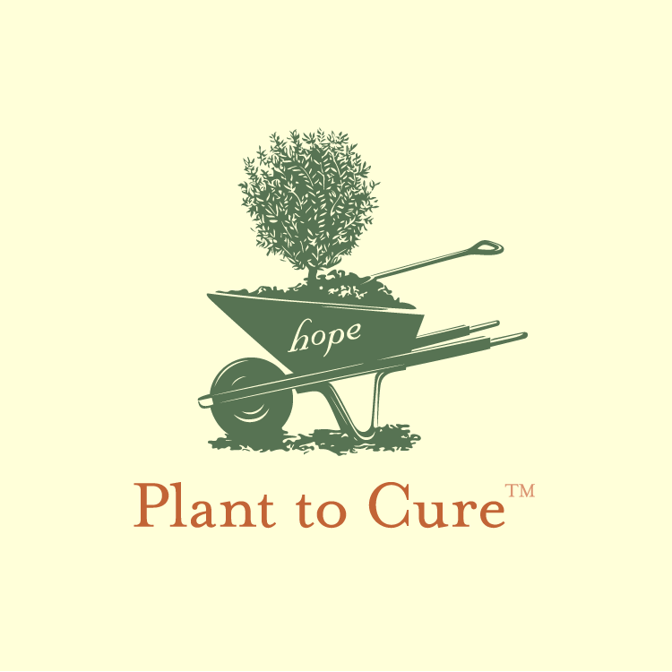 plant_to_cure.png