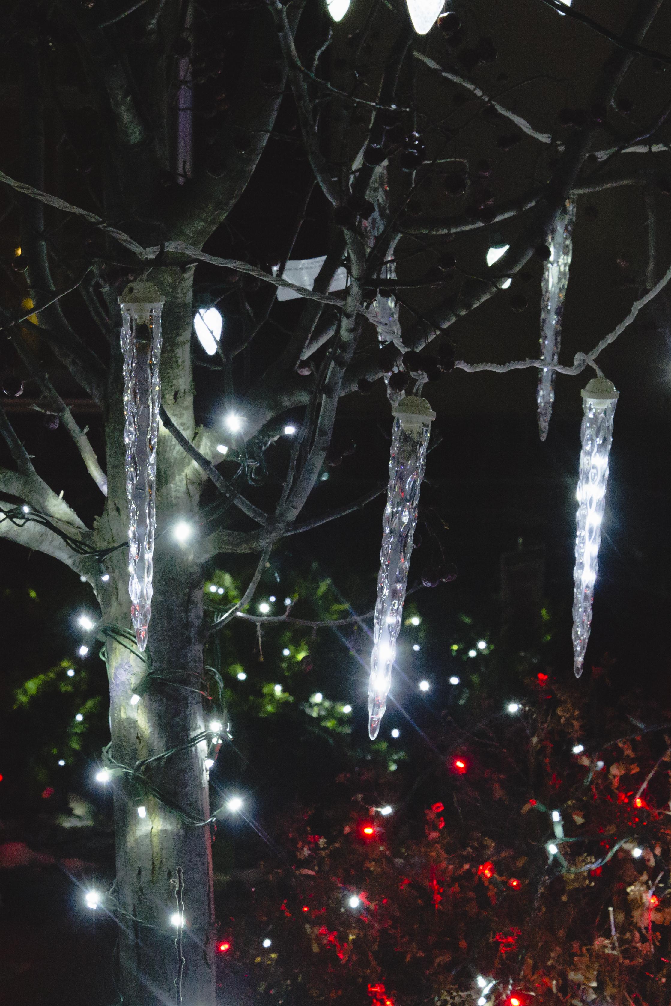 xmaslights-147.jpg
