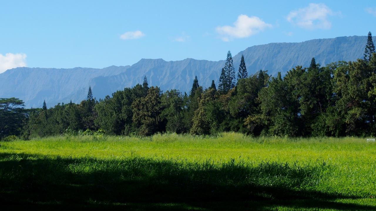 Wai Koa Loop Trail views