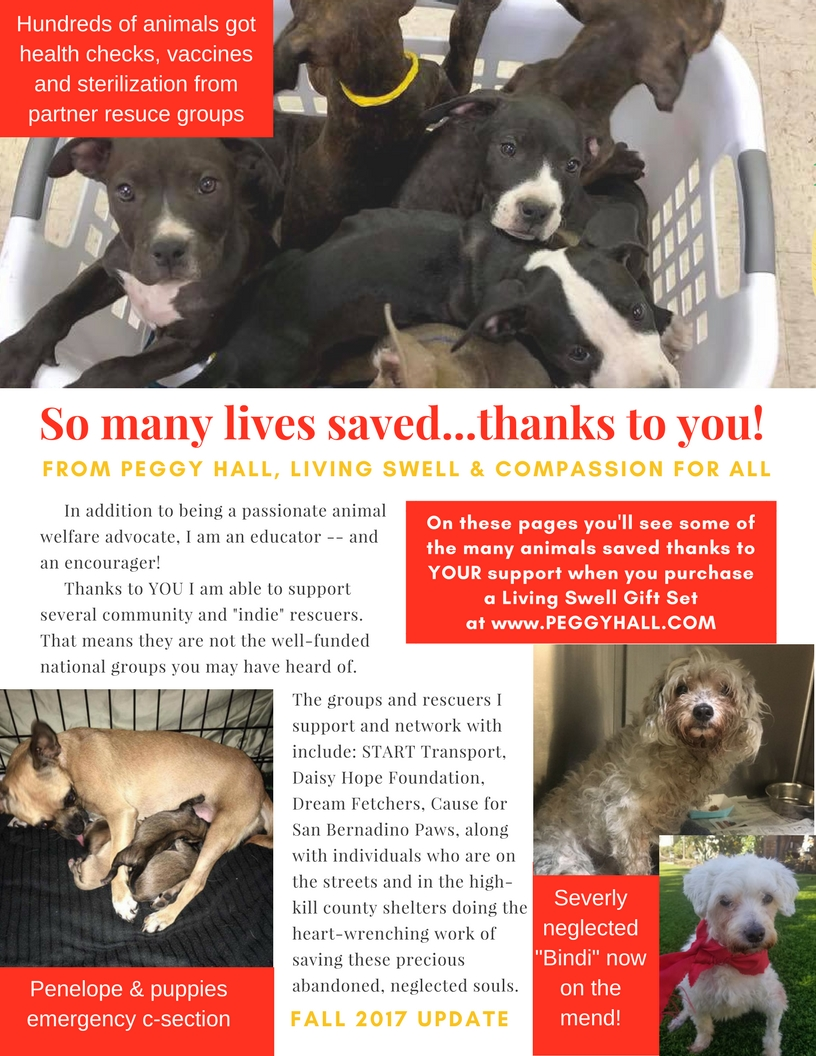So many lives saved...thanks to you! (1).jpg
