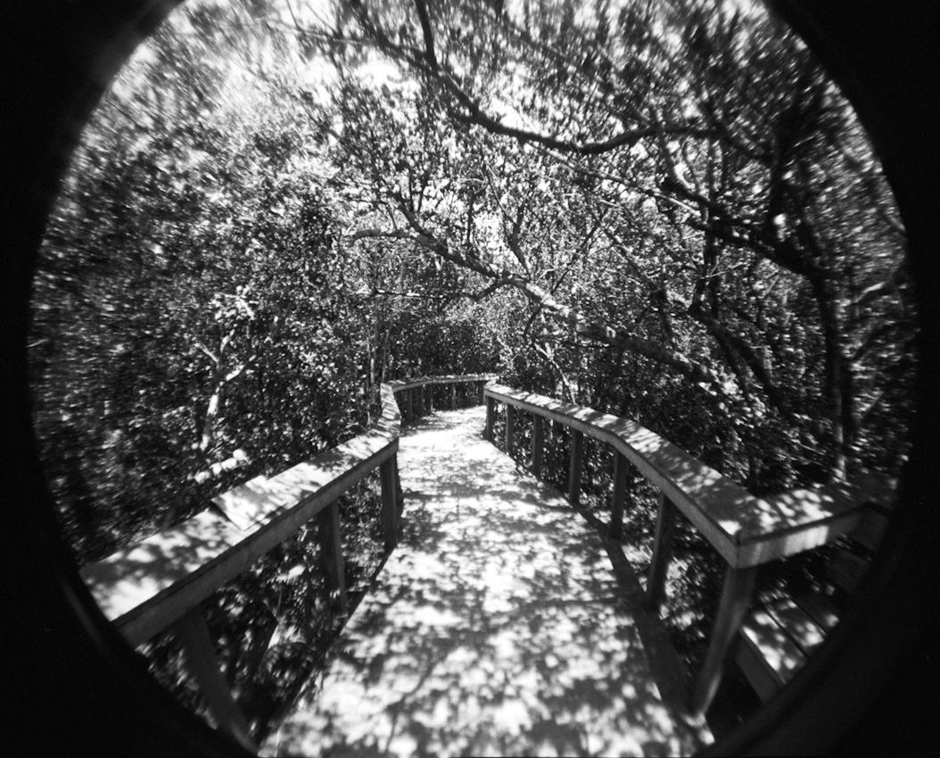 44_walkway_lowres.jpg