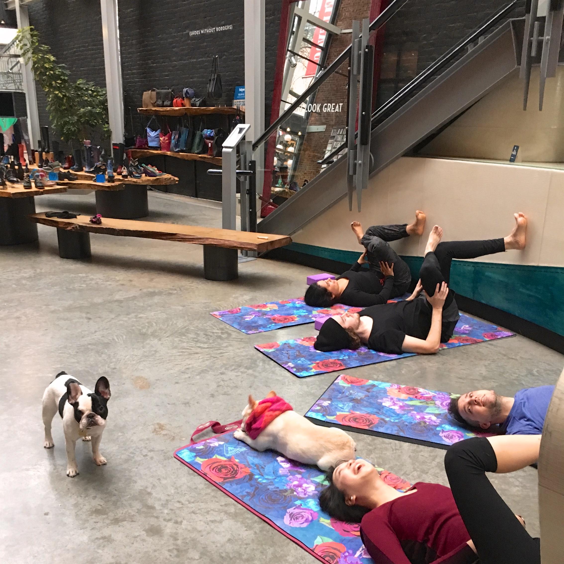 Corporate yoga for John Fluevog Shoes