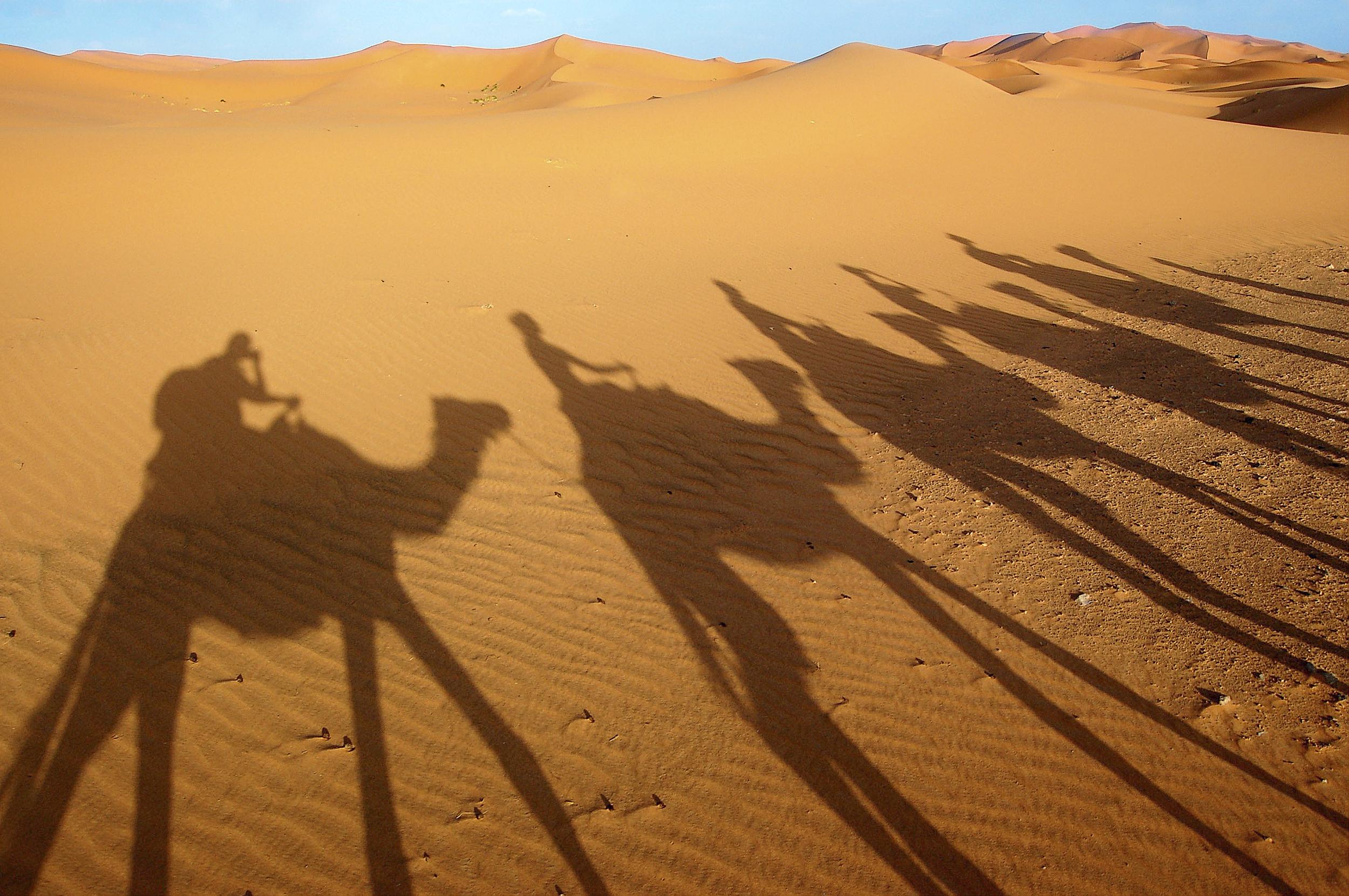 Camel_Shadow.jpg