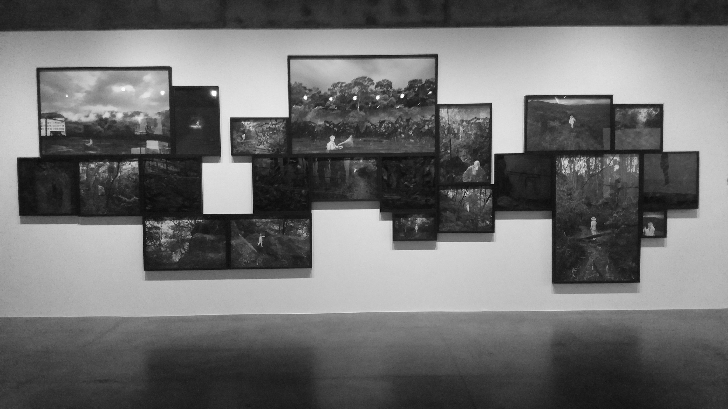 Pedro Motta  série  Flora negra,  2015/2016)
