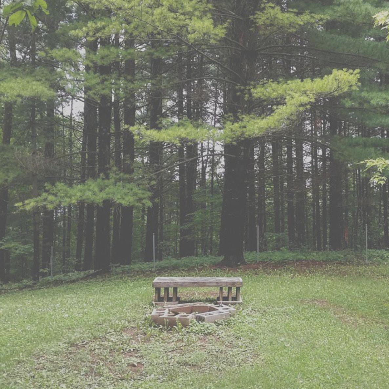 A forest hug.