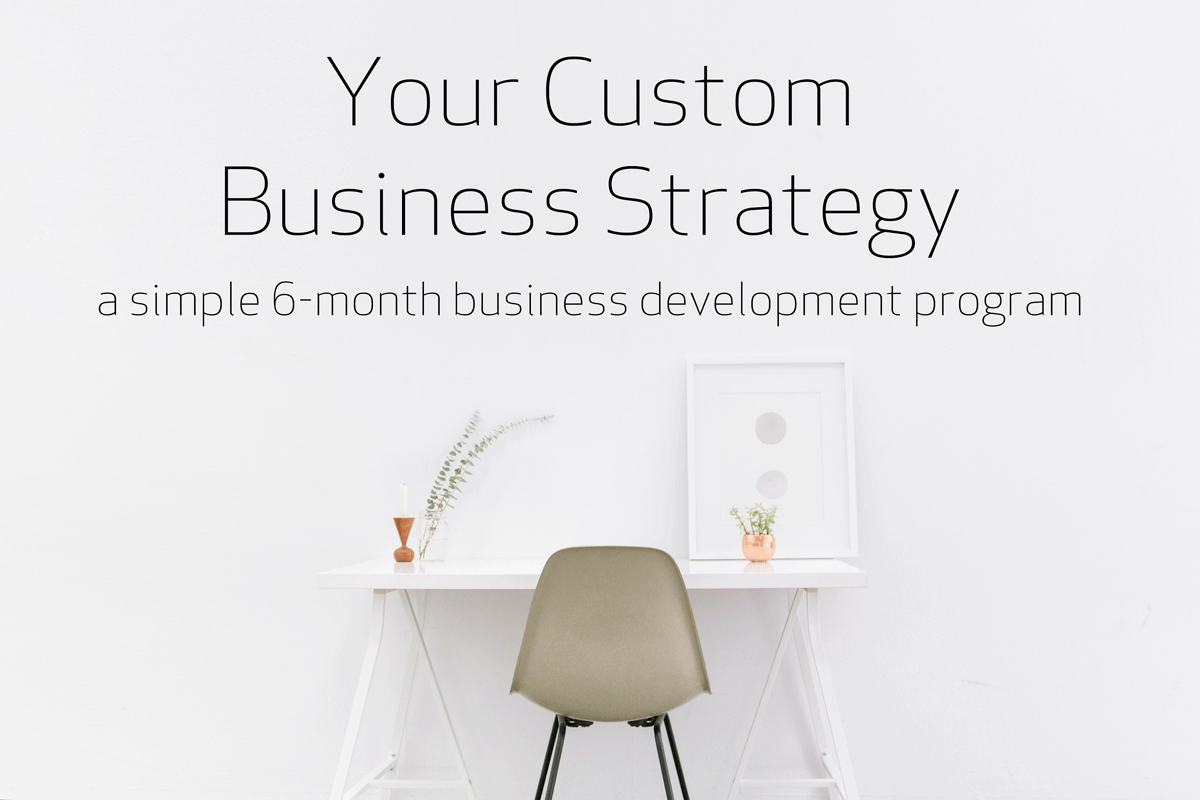 Your-Custom-Business-Strategy.png